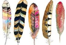 Feather Your Nest / Anything containing feathers and/or nests.