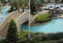 Hotels & Resorts in Orlando / by Arrive Orlando