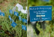Favors and Placecards