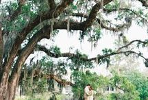 Best Wedding Venues in the US