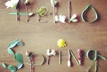 spring / by GrayDayStudio { Abigail }