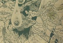 albums illustrations