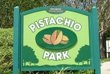 Pistachio Park / by Wonderful Pistachios