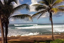Surfing in Bathsheba / Soup Bowl and Parlors are worldknown surf spots in Bathsheba at the east coast of Barbados
