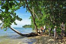 Voyages d'aventure au Costa Rica / Le Costa Rica offre de beaux moments de détente et de découverte dans des lieux paradisiaques comme le parc national du Corcovado, le volcan Arenal ou les plages de la côte Caraïbes ou Pacifique.