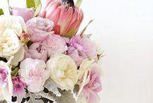 flower flower and bouquet