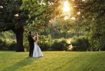WEDDINGS BY SHANE TINCU FILMS