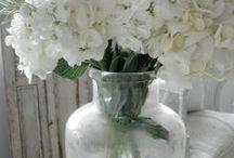 Flowers / by Ana Teixeira