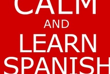 Learning to Speak Spanish  / by Becky Lyons Borgia