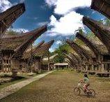 Sulawesi-Célèbes Authentique / Sulawesi, également appelée les Célèbes, est une grande île découpée en forme de K, encore peu touristique et qui offre un excellent terrain d'exploration pour ceux qui apprécient « l'aventure ». On peut y ressentir des ambiances exotiques au possible, et se sentir très souvent arrivé au « bout du monde ». Les circuits Bali Authentique à Sulawesi se limitent aujourd'hui à la branche sud-ouest du K, constituée essentiellement des Pays Toraja et Bugis.
