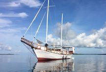 Croisières par Bali Authentique / L'Indonésie, au moins 17 000 îles, le plus grand archipel du monde. Quoi de plus logique, dès lors, que de partir à sa rencontre par la mer ? Fi des routes et des sentiers, on gagne en liberté, liberté d'accoster sur des plages désertes aux fonds marins immaculés, de partager des moments riches, souvent émouvants, auprès de personnes fort peu habituées à voir des étrangers s'aventurer dans leur contrée isolée. On se sent privilégié