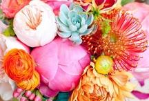Flowers + Florals