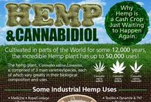 Cáñamo-Hemp / Cáñamo Industrial / Hemp. Diversos usos y subproductos del cáñamo. Medicina natural. CBD. Cannabidiol