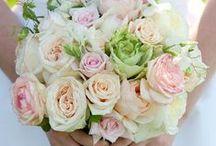 Wedding / by Kenzie Mathess