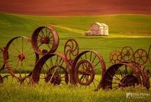 Barns/Churches / by Angela Stepp