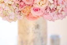 Wedding stuff / All about weddings! / by Daniah Tanori