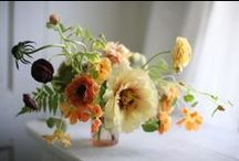 Flowers / by Dreamer... Dreams
