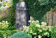 Gardens ll / by Jenny Katatumba