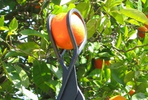 Products Made in America (USA) / The Twister Fruit Picker is proud to support products Made in the USA #TwisterFruitPicker is #MadeInUsa / by The Twister Fruit Picker®