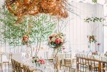 Reception Details / by The Knot
