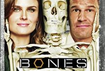 """{ Bones } / The premise of the show is an alliance between forensic anthropologist Dr. Temperance """"Bones"""" Brennan and FBI Special Agent Seeley Booth. Brennan is the central character and team leader of the fictional Jeffersonian Institute Medico-Legal Lab, a federal institution which collaborates with the FBI, mirroring the real-life relationship between the FBI and the Smithsonian Institution.  / by Pam Smith"""