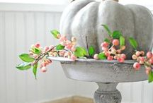 Fall Decor & DIY / Fall in love with your home decor this Autumn.