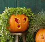 Halloween Decor & DIY / Spookify your home this Halloween with these trendy design ideas!
