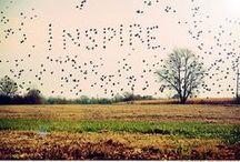 Evasion / Un voyage, une évasion. Un autre temps, un autre lieu, un autre imaginaire. / by Mély | Chaudron Pastel