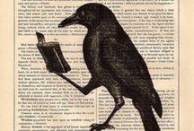 #BookBabe  / by Brenda Harper