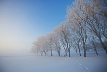 WINTER - CANADA, USA, UK....... / by Anne Csak