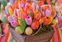 Spring has Sprung! / Spring weddings, spring time, spring flowers, spring decor, spring colors, spring wedding decor