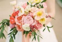 flowers / by Chloe Stern