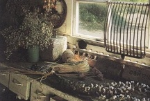 in the Potting Shed...