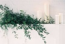 foliage is our favourite / by Academy Florist