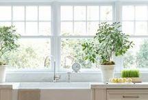 kitchen / my dream kitchen...light, airy, open