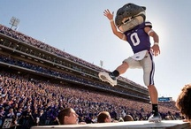 Purple Pride / Love of everything purple and Kansas State. #kstate #emaw / by Diana Lee