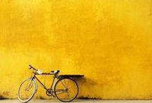 Zalando ♥ Couleurs / Sur ce board, le N&B est interdit! Les couleurs sont à l'honneur!