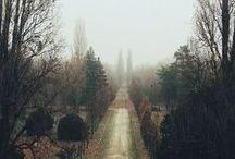 Wege / Der Weg...  er ist wie ein Leben... / by Mika I. ♪
