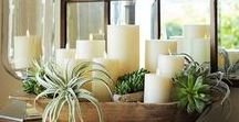 table settings / pretty #tablesettings including #centerpieces