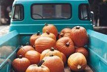 A U T U M N / Autumn | Fall | Thanksgiving | Halloween