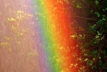 Color Therapy / Love and appreciation for all of the beautiful colors surrounding us. ♥