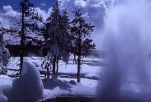 Winters in Yellowstone & West Yellowstone!