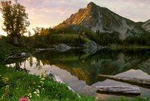 Oregon / by Melissa Jacob