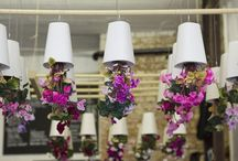 Decoração: Vasos Invertidos