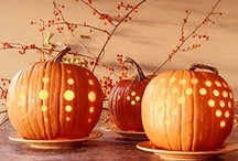 Pumpkin Love / Nothing says Fall like pumpkins!