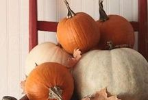 Pumpkin Love / I have a thing for pumpkins!