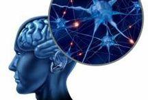 Neuroscience / Neuroscience for eating disorders