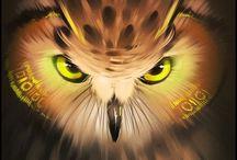 All Things Owls / by Debbie & Chet Sobieski