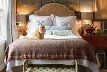 Master Suites by Natural Home Rugs