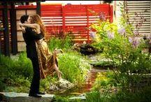 Engagement shoots at Berkeley Events Weddings / by Berkeley events Weddings